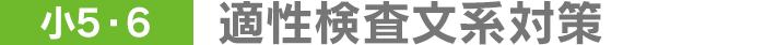 [小5・6]適性検査文系対策
